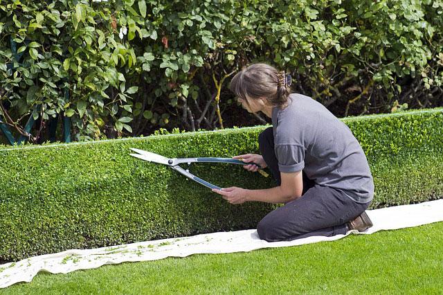 Jakie obrzeża ogrodowe będą najlepsze?