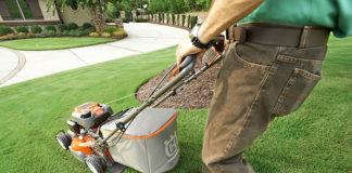 Artykuły, które pomogą Ci zadbać o swój ogród